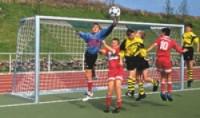 Fotbalová branková síť, PP 4 mm,dvoubarevná